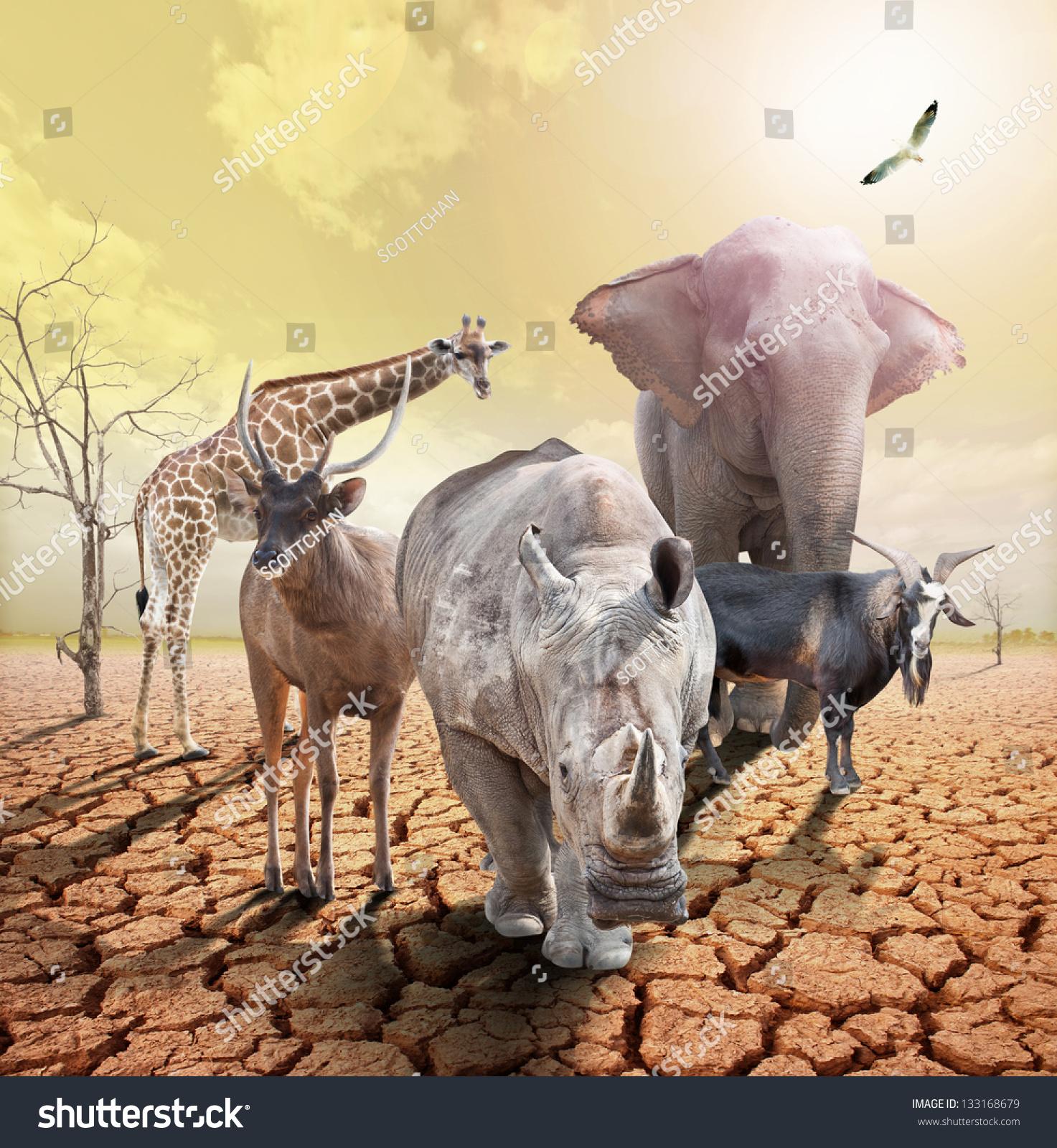 全球变暖的动物形象概念