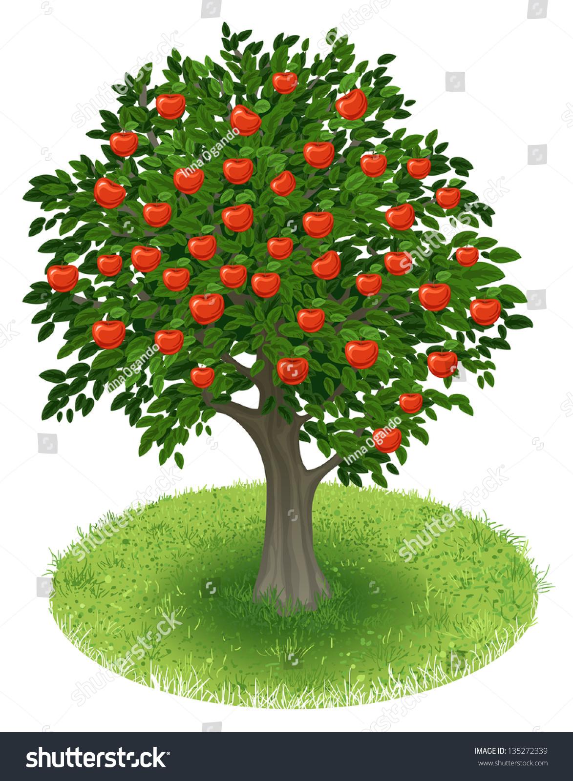 盆栽苹果钩法图解