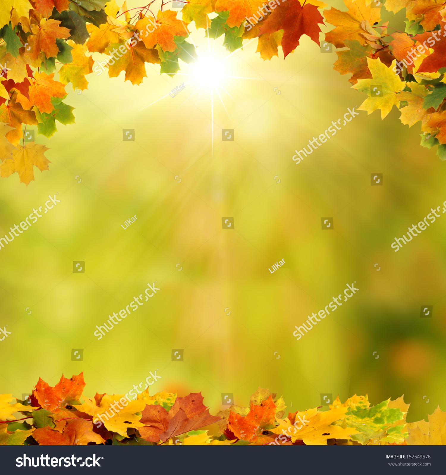 秋天的樣子設計主題網絡圖
