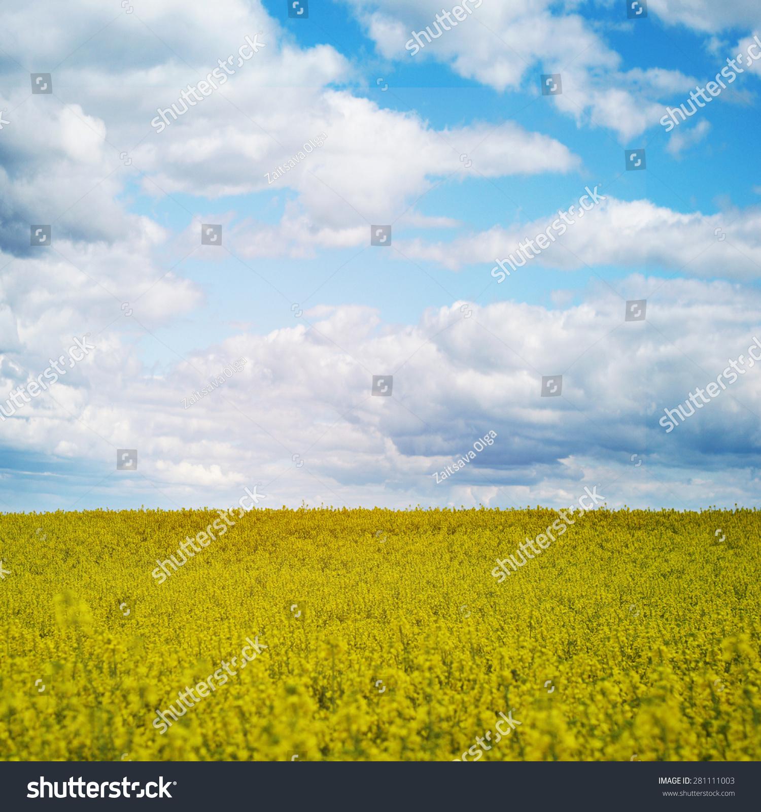 春天大自然风景屏保